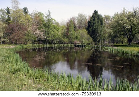 green lush pond in city park with trees