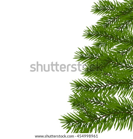 Green lush spruce branch. Fir branches. Isolated on white raster illustration - stock photo