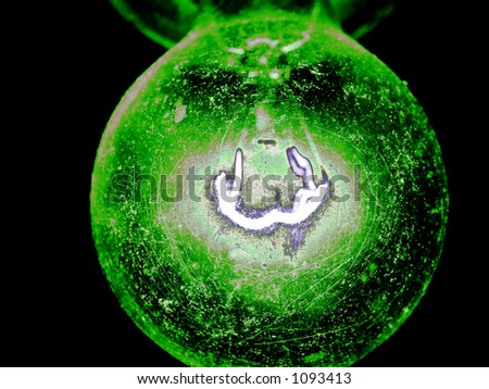 green macro light bulb - stock photo