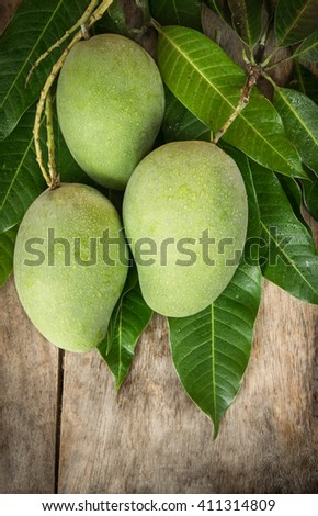 Green mango tropical fruit - stock photo
