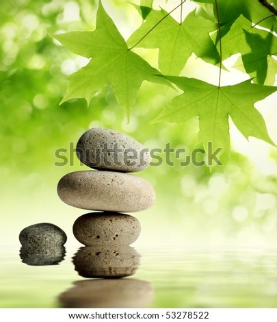 Green maple leaves over zen stone - stock photo