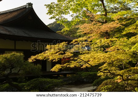 Green maple trees and Japanese-style house in the Japanese garden  of Ginkakuji Temple. - stock photo