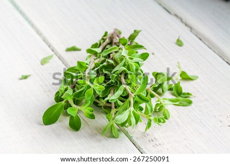 Green marjoram herb leaves on a white wooden background - stock photo