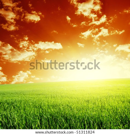 Green meadow and abstract red sky with clouds