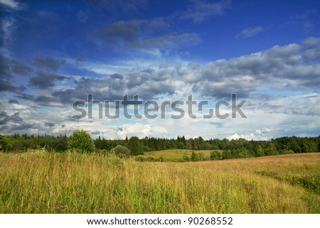 Green meadow and forest under blue dramatic sky with clouds - stock photo