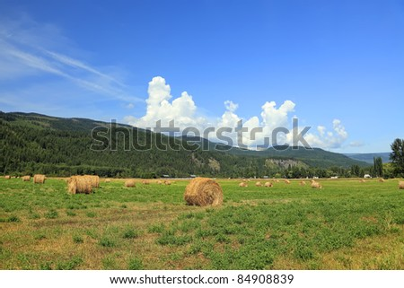 Green meadow and haystacks on the mountains and blue sky background