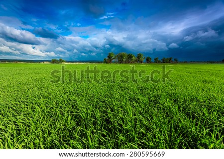 Green meadow and stormy sky - stock photo