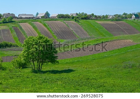 Green meadow and trees on the outskirts of countryside in early spring. - stock photo