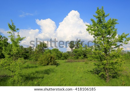 Green meadow at nice sunny day - stock photo