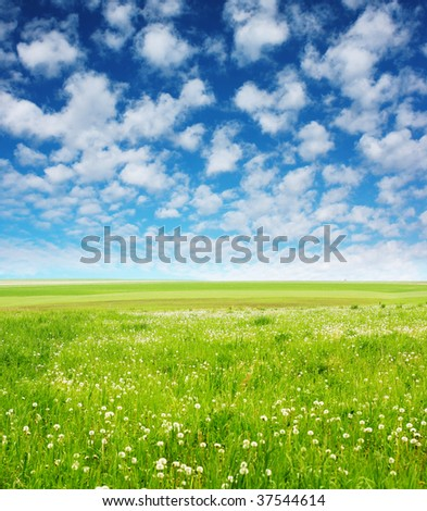 Green meadow blue sky with clouds