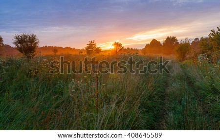 Green meadow on sunset - stock photo