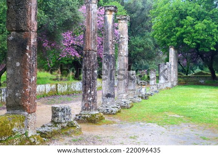 Green meadow sided by standing columns in the ancient sanctuary at Olympia, Greece - stock photo