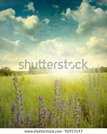 Green meadow under blue sky with cloud - stock photo