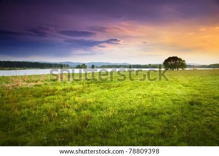 green meadow under the purple sky - stock photo