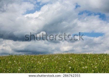 Green meadow with dandelions and sky with clouds - stock photo