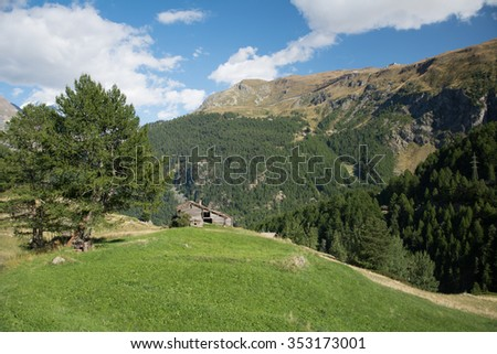 Green meadow with house in the swiss Alps, Zermatt - stock photo