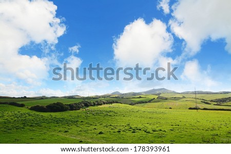 green meadow with sheep on a cloudy day - stock photo