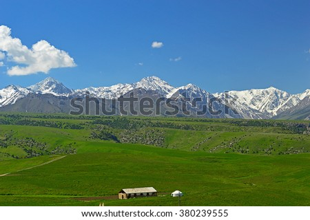 Green meadow with snowy mountains on background, Haidarkan area, Kyrgyzstan