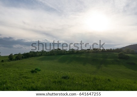 Green meadow with trees and views to mountains. Slovakia