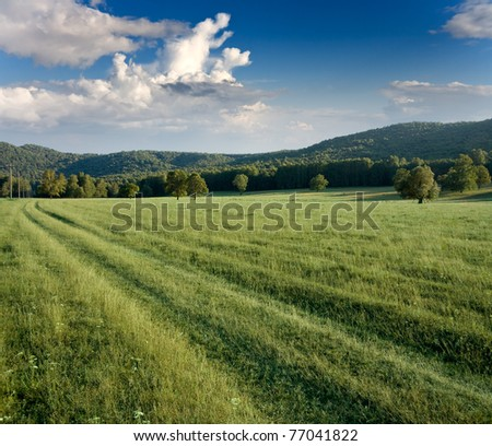 green meadows and forested hills on cloud background