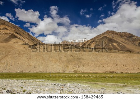 Green Meadows and Magnificent Mountains of Himalaya in Deep Blue Sky with White Clouds - Ladakh, India - stock photo
