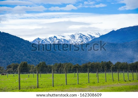 Green meadows and rustic fence, New Zealand