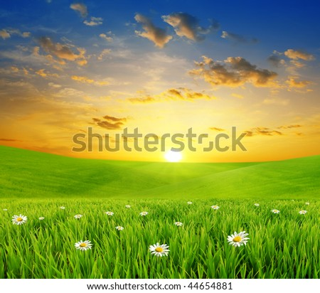 green meadows on a background sunset - stock photo