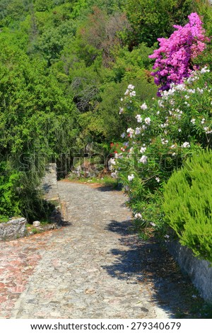 Green Mediterranean vegetation with bright flowers surrounding a stone alley in summer - stock photo