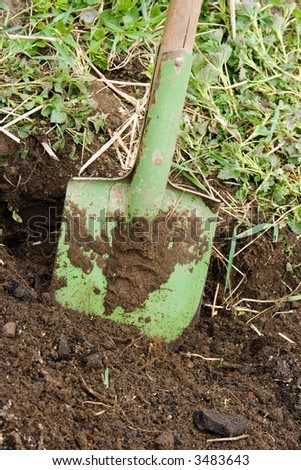 Green metallic shovel in the black ground - stock photo
