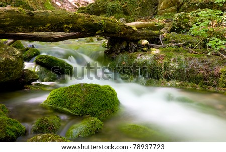 Green mountain stream in Crimean forest - stock photo