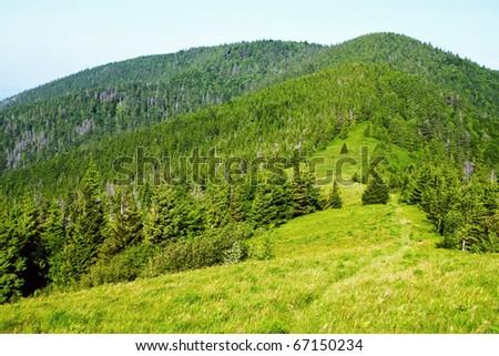 Green mountain view - stock photo