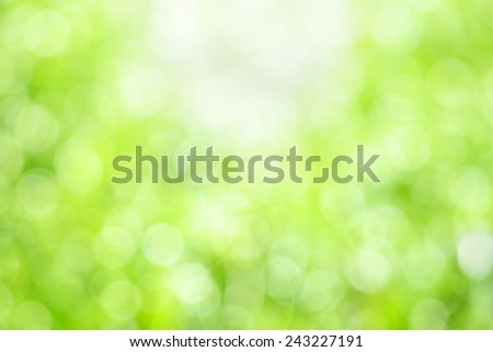 Green natural bokeh background - stock photo