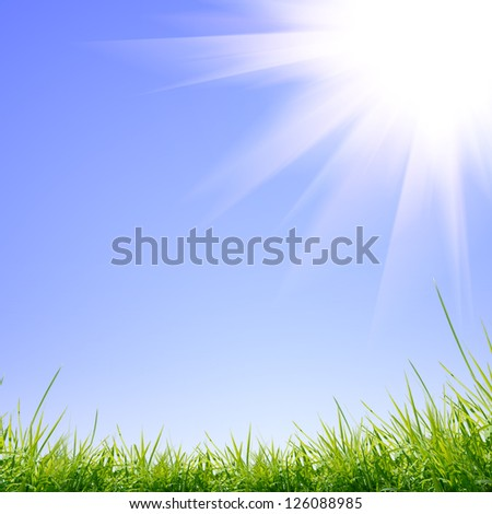 green nature background with grass - stock photo