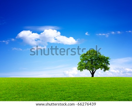 Green nature landscape - stock photo
