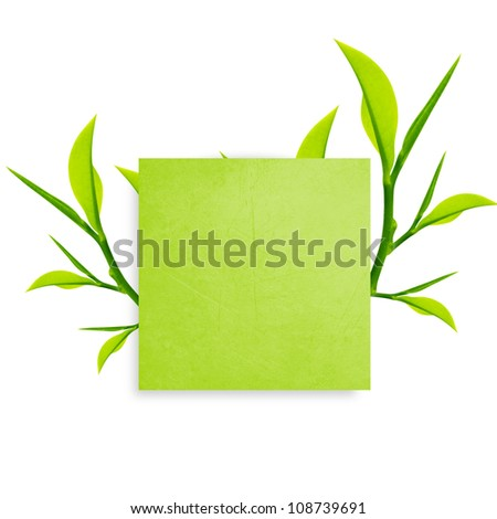 Green Note paper with paper clip  and green leaves on white background. - stock photo