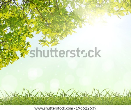 green oak foliage and grass on bright background