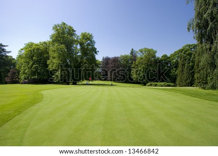 Green of a golf course