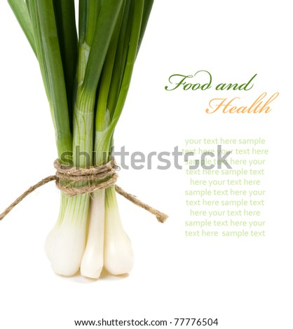 Green onion  (Food and health concept) with space for text - stock photo