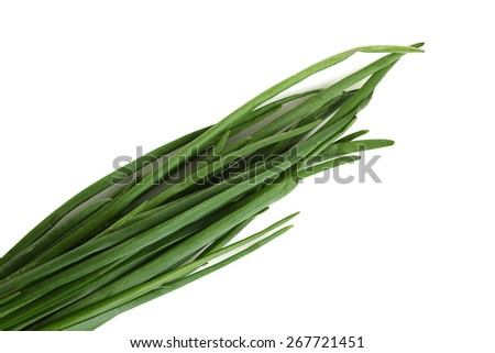 green onion isolated - stock photo
