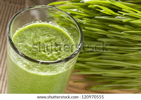 Green Organic Wheat Grass Shot ready to drink - stock photo