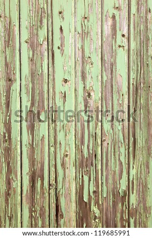 Green paint peeling off old grey wooden boards - stock photo