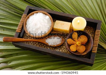 Green palm background- spa sitting - stock photo