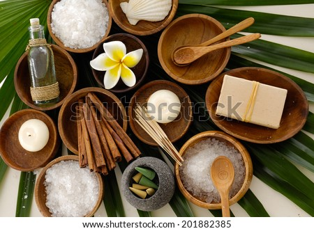Green palm background- spa sitting - stock photo