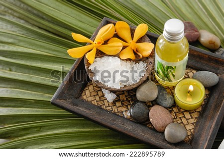 Green palm leaf background- Health spa - stock photo