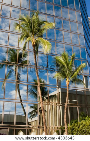 Green palm trees reflecting an image off an office building