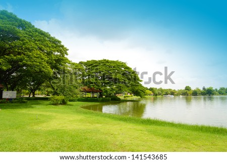 Green park - stock photo