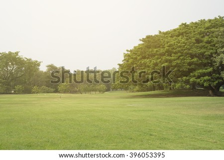 Green park scenery