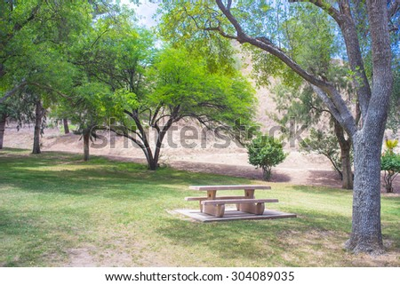 Green park trees above a picnic table in the southwest of California. - stock photo