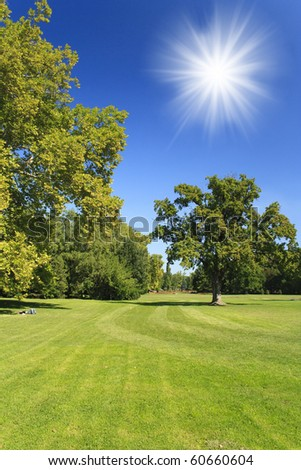 Green park with blue sky and sun, Hungary - stock photo