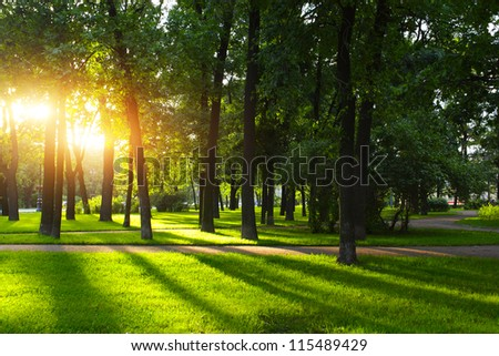 Green park with lawn and trees in a city at sunset - stock photo